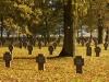 Parque Eólico Roye, cementerial alemán